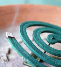 A mosquito coil burns in a terra cotta tray on a table.